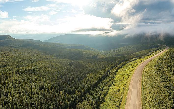 Αναδάσωση με στόλο drones στον Καναδά